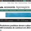 Produtores Paulistas devem colher 400 toneladas de cambuci em 2014