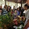 Plantio, novas receitas, negócios, artesanato e bandas musicais: cambuci agita mais uma vez a Vila de Paranapiacaba