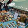 Cambuci surpreende líderes do Slow Food em evento mundial na Itália