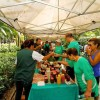 São Paulo inicia Plano Municipal de Mata Atlântica em evento com Cambuci