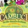 10º Festival Gastronômico do Cambuci de Rio Grande da Serra movimenta final de semana