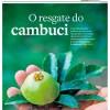 CAMBUCI É MANCHETE NO ESTADÃO
