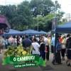 Festival de Abertura da Rota do Cambuci 2017 é sucesso de público, divulgação e vendas. Instituto Auá agradece a quem doou para a campanha de realização do evento