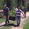 Sítio em Salesópolis ganha 290 nativas para neutralizar emissões