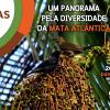 Confira a Programação do Nativas 360º no Mercado de Pinheiros