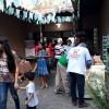 Festival do Cambuci e Jardim de Orquídeas colorem Parque da Serra do Mar